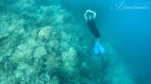 Freedive di Cemara