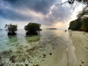 Pesisir Pantai Pulau Perak